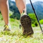 Nordic Walking. Jak rozpocząć spacer z kijkami po zdrowie