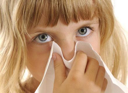 Nos działa niczym filtr, podgrzewacz i nawilżacz powietrza w jednym /© Panthermedia