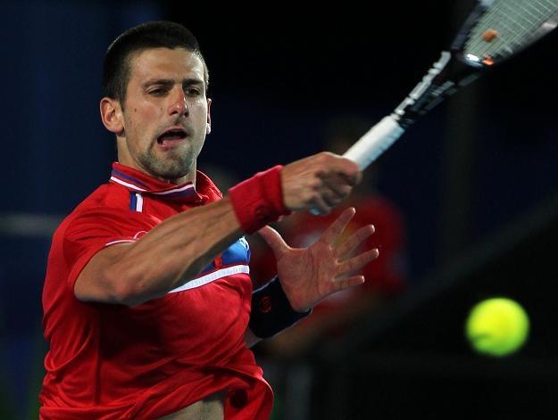 Novak Djoković zdobył jedyny punkt dla Serbii w meczu z Belgią /AFP