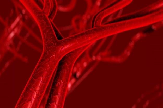 Nowa metoda leczenia uszkodzonych naczyń krwionośnych wykorzystuje nanocząstki /123RF/PICSEL