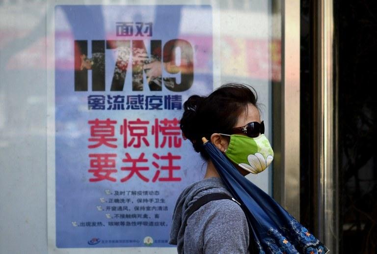 Nowa ptasia grypa pojawiła się w Chinach /AFP