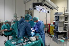 Nowatorska operacja wszczepienia bioplantu rzepki