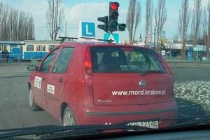 Nowe prawo jazdy później