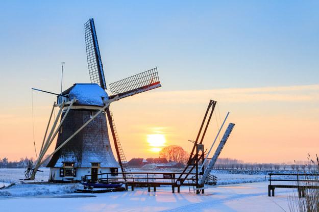Nowe prawo w Holandii uderzy w polskie firmy? /123RF/PICSEL