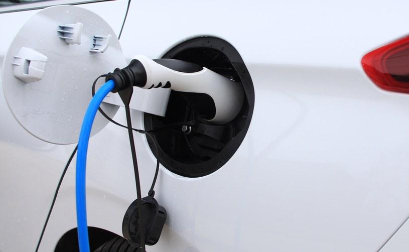 Nowy samochód elektryczny miałby być udostępniany kierowcom na zasadzie car-sharingu /INTERIA.PL