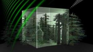 Nowy satelita będzie obserwował ziemskie lasy
