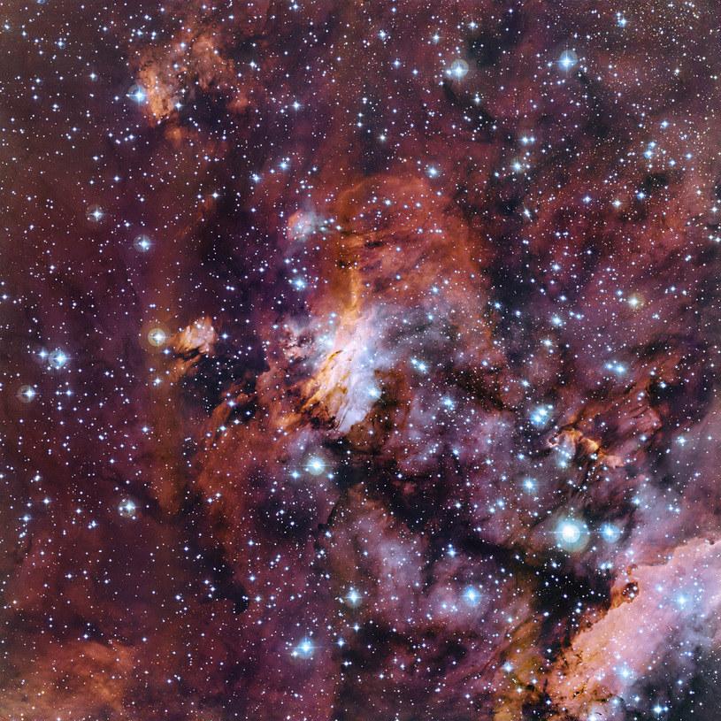 Obłoki gazu i młode gwiazdy w Mgławicy Krewetka /materiały prasowe