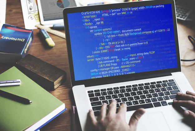 Obszarem, w którym młodzi pracownicy otrzymują atrakcyjne wynagrodzenie na start, jest IT - rozwój oprogramowania /123RF/PICSEL