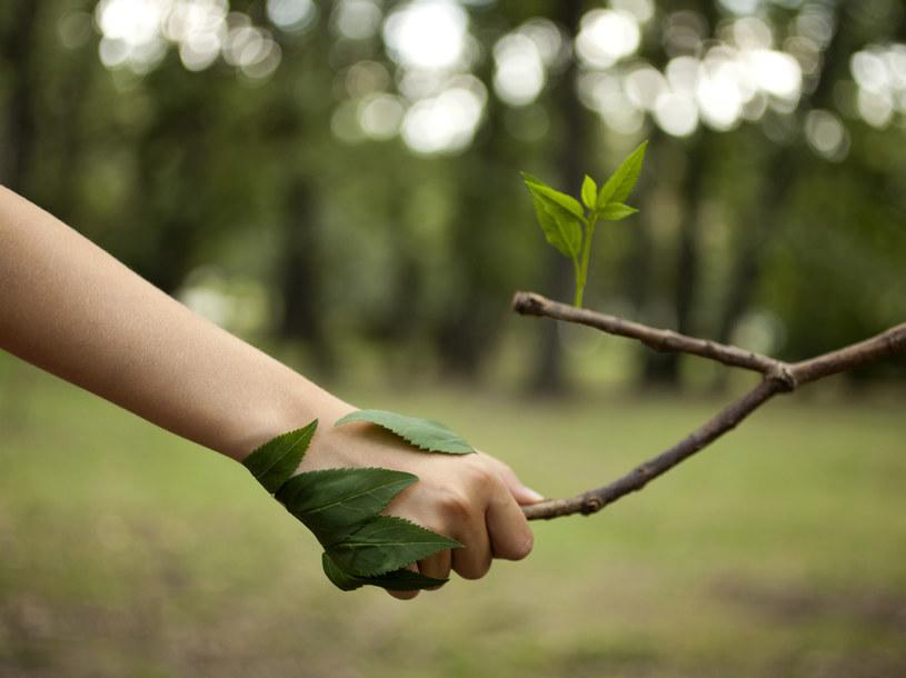 Ochrona przyrody /materiały prasowe