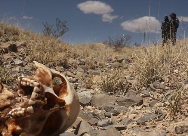 Od początku 2006 roku w Meksyku, w wyniku walk gangów narkotykowych, zginęło już... 25 tys. osób. /Getty Images/Flash Press Media