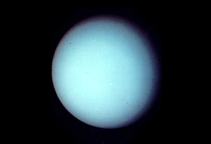Odkryta właśnie plameta przypomina Urana (na zdjęciu) w naszym Układzie Słonecznym. /NASA