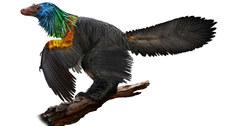 Odkryto nowego dinozaura zpięknym pióropuszem nagłowie