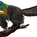 Odkryto nowego dinozaura z pięknym pióropuszem na głowie