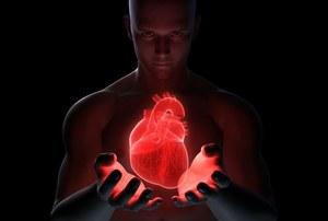 Odkryto nowy gen związany z chorobami serca