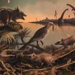 Odnaleziono zęby najwcześniejszych przodków ssaków