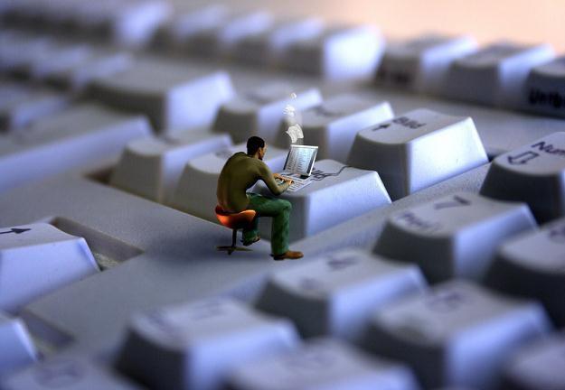 Oferty pracy są skierowane do specjalistów, studentów oraz absolwentów kierunków informatycznych /© Panthermedia