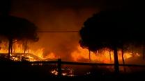 Ogień trawi hiszpańskie lasy