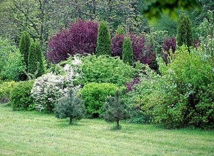 Ogród i balkon może cieszyć o każdej porze roku