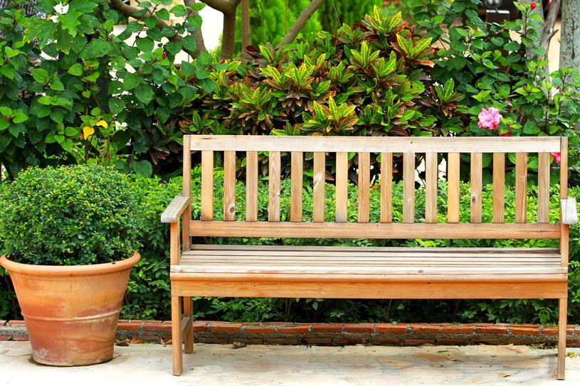 Ogrodowa ławka wymaga dobrej ochrony /123RF/PICSEL