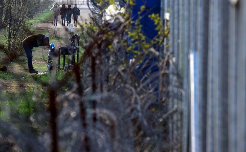 Ogrodzenie na granicy serbsko-węgierskiej /AFP