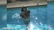 Ogromny pies boi się pływać. Odważy się?
