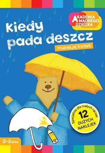 """Okładka książki """"Kiedy pada deszcz"""" /materiały prasowe"""