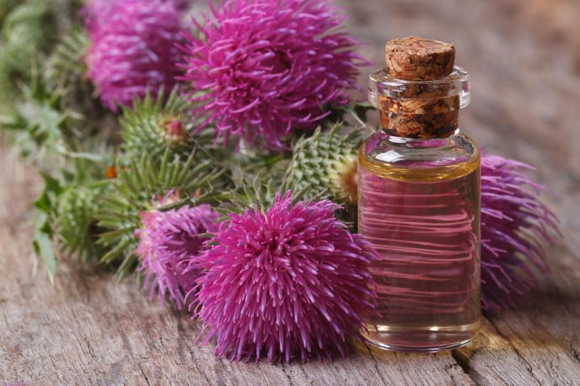 Olej z łopianu zregeneruje włosy farbowane /123RF/PICSEL