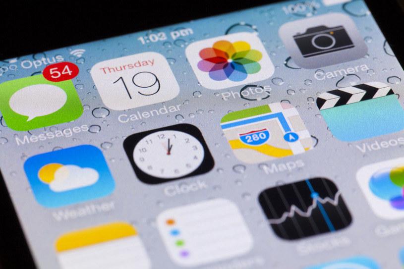 olska plasuje się na 10 miejscu pod względem odsetka odsłon iOS w sieci /AFP