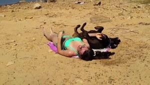 Opalanie w towarzystwie psa nie jest łatwe