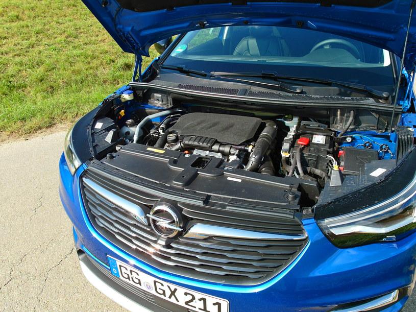 Opel Grandland X /INTERIA.PL