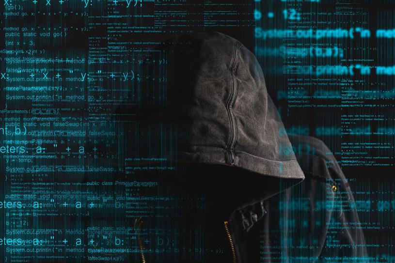 Organizacje cyberprzestępcze umieją bardzo skutecznie ukrywać swoją tożsamość /123RF/PICSEL