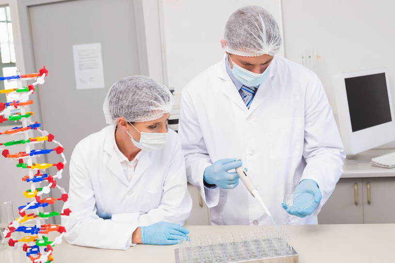 Organoidy do testowania przyszłych leków i terapii z drukarek 3D /©123RF/PICSEL