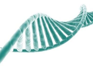 Origami DNA to koń trojański nowotworów