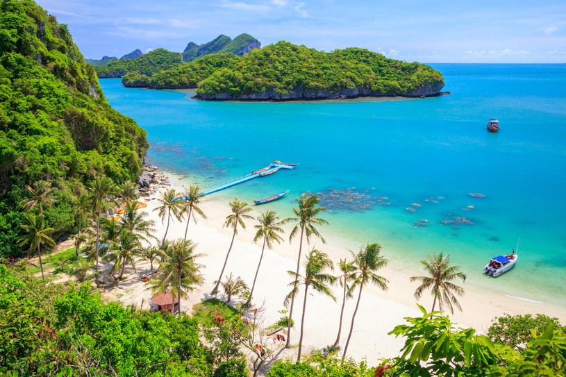 """Osoby z ograniczonym budżetem powinny unikać jednak przede wszystkim Ko Samui, zwanej """"wyspą kokosowych drzew"""" /123RF/PICSEL"""