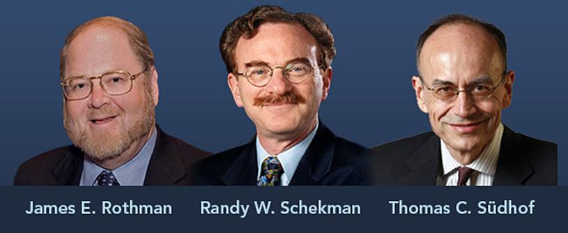 Oto laureaci tegorocznej Nagrody Nobla w dziedzinie fizjologii i medycyny /AFP