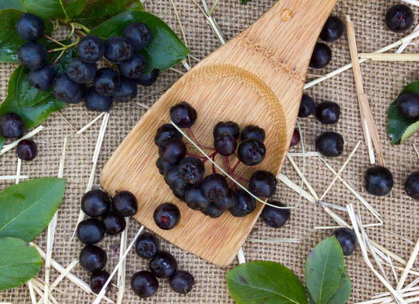 Owoce aronii to samo zdrowie /123RF/PICSEL