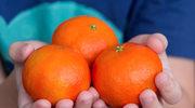 Owoce pełne witamin