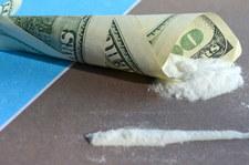Padł rekord produkcji opium i kokainy