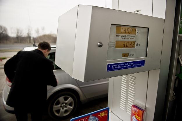 Paliwa znacznie podrożały, ale ceny nie są wszędzie takie same /PAP