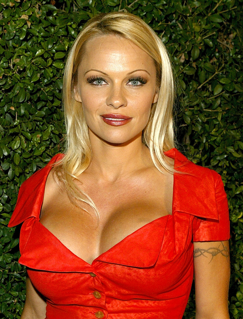 Pamela Anderson, 2003 rok /Carlo Allegri /Getty Images