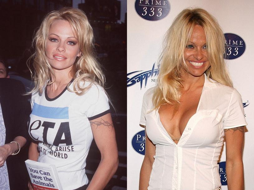 Pamela Anderson  /Getty Images/Flash Press Media