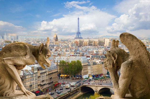 Panorama Paryża /123/RF PICSEL