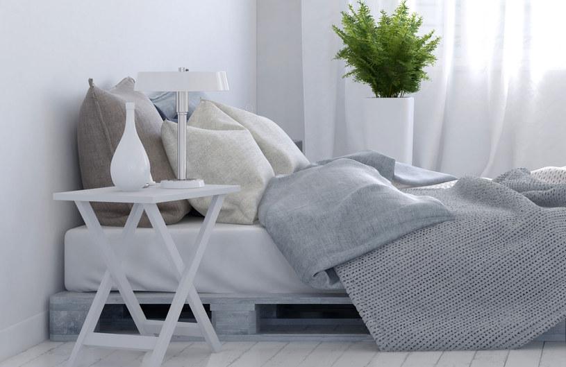 Paprotki idealnie sprawdzą się w sypialni /©123RF/PICSEL