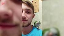 Papuga dała mu bolesną nauczkę