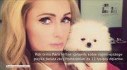 Paris Hilton ma nowego pupila