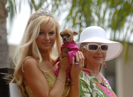 Paris Hilton z matką i psem /Getty Images/Flash Press Media