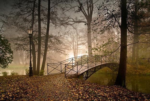 Park Zamkowy w Pszczynie, fot. Prajzner /East News
