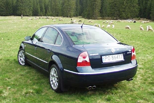 Passat W8 Limousine (kliknij) /INTERIA.PL