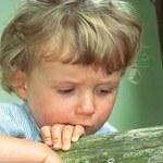 Pedofilia - chora fascynacja