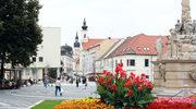 Perły Małych Karpat. Centrum słowackiego winiarstwa